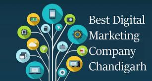 Devex Hub | Digital Marketing Company in Chandigarh
