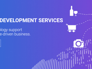 High Quality eCommerce Development Solutions