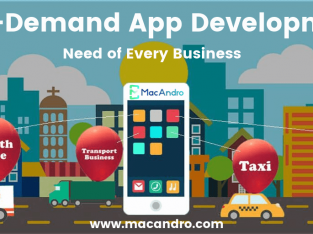 Customized On-Demand App Solutions for Small & Large Scale Businesses | MacAndro