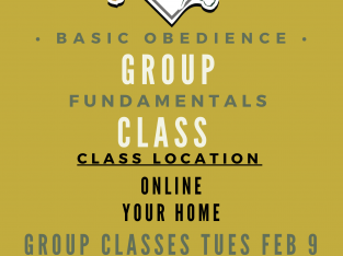 Online Fundamentals Group Class Location Online, 931-516-3064