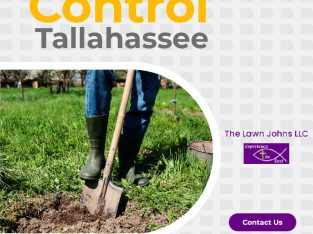 Get Flowerbed Weed Control in Tallahassee At The Lawn Johns