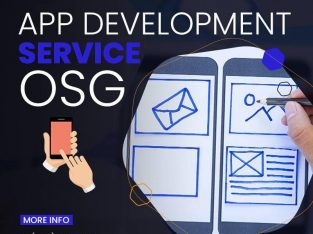 Orchard Solutions Global Provides Best App Development Services