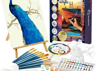 Painting Set with Paint by Number Kits – Peacock Painting
