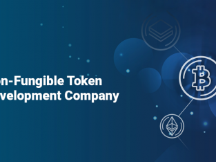 Antier Solutions | World's Leading NFT Token Development Company