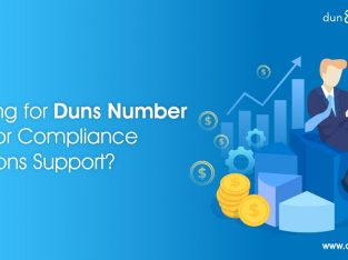 How to Access DUNS Number Lookup in Dubai | DNB UAE