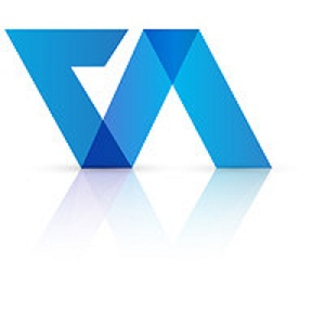 Company Valuation India – Virtual Auditor