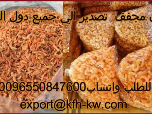 Wholesale export only dried shrimp to all countries