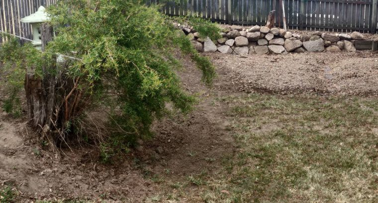 Garden retaining wall and turf prep for seeding.