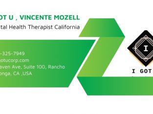 Mental Health Therapist California