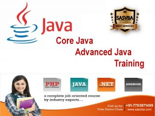Best Java Android online Training delhi-Sasvba