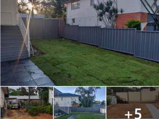 Colour bond fencing with double swinging gates and fresh new lawn