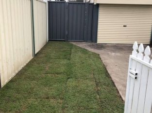 Colour bond fencing with single swinging gate and fresh new lawn