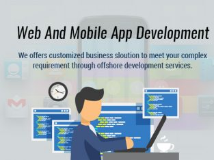 Hire Dedicated Web and Mobile App Developers in USA