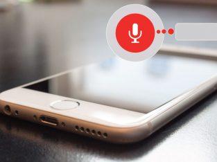 Google Voice Search optimization 2021