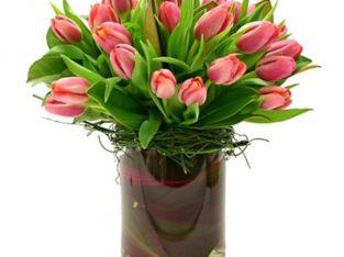 Beautiful Tulip Vase