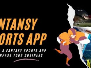 Redeem a Fantasy Sports App and surpass your business