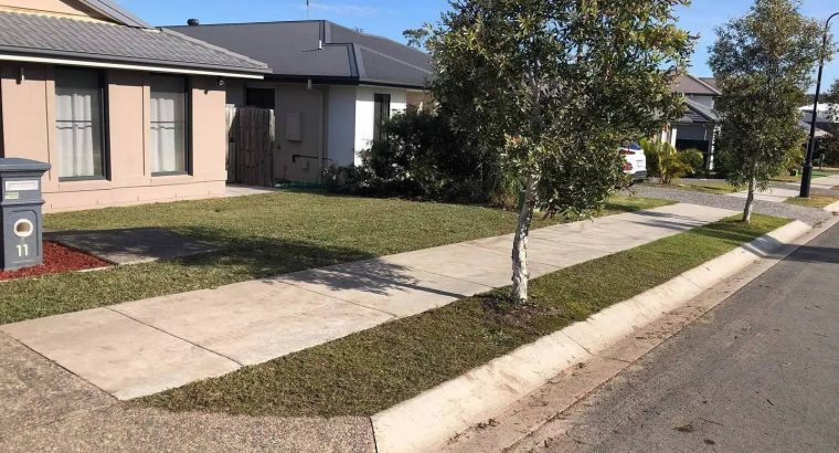Front yard clearing and turfing