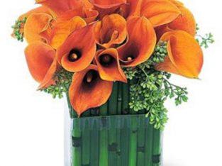 Orange Cala Lily Flower Vase