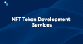 It's time to take ownership of your own asset | Hire NFT Token Development Company