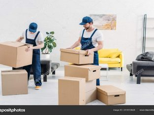 Relocation Services Packers Movers in Jaipur