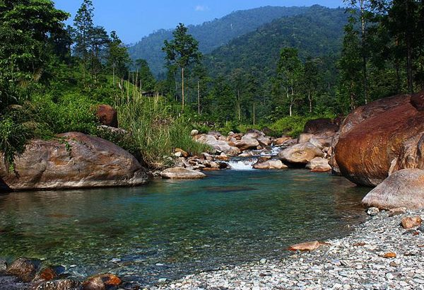 Book Dooars package with Darjeeling and Kalimpong from Meilleur Holidays