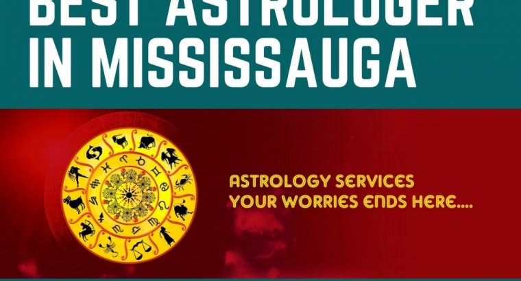 Meet This Famous Indian astrologer in Mississauga Online