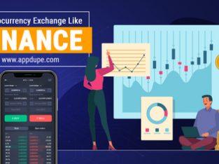Obtain the customizable Binance Dex Website
