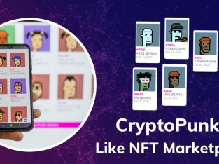 Cryptopunks Clone – Let The Millennials Go Craze With Our NFT Marketplace