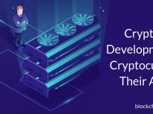 Cryptocurrency Development: Types of Cryptocurrencies and Their Applications