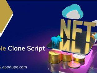 White-label Rarible like NFT Platform Development