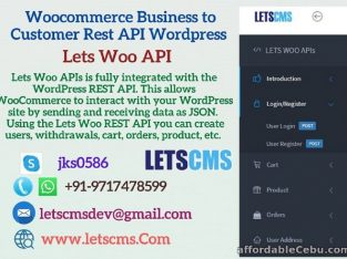 Business to Customer Rest API for Woocommerce   WordPress B2C Rest API Plugin