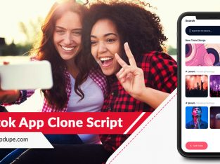 Make A Stupendous Entry Into The Video App Market With A TikTok Clone App